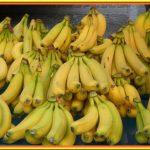 Slimjet complement - Perdre du poids avec du citron Test complet