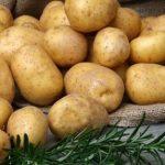 Comparer Maigrir des grosses cuisses | Vanefist Neo - Avis des experts
