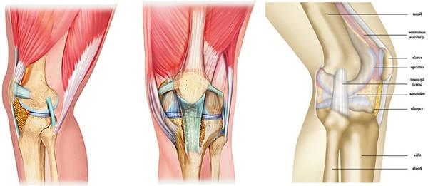 arthrose de la hanche intervention chirurgicale