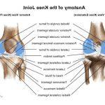 Classement Soulager l'arthrose du homme | Flexa Plus Optima - Où l'acheter ?